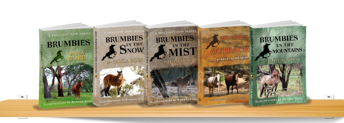 Brumbies series