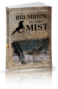 Brumbies in the Mist